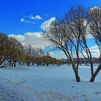 Весна в городе :: Попкова Александра