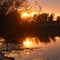 Закат на реке Тобол :: галина