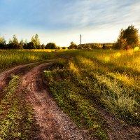 Это обычное русское поле, но как же красиво :: Вячеслав Ложкин