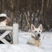 Дама с собачкой :: Alex Bush