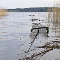 Браславские озера :: Татьяна