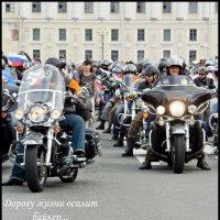 Парад Harley-Davidson в Петербурге :: Илья Кузнецов