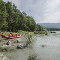 Сплав по реке Катунь :: Жанна Мальцева