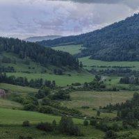 Дорога  на Чемал :: Жанна Мальцева