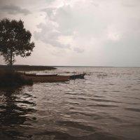 Плещеево  озеро. :: Ольга Афанасьева