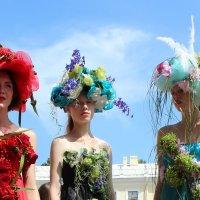 фестиваль цветов :: Елена Маковоз