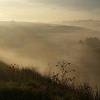 утро туманное :: esadesign Егерев
