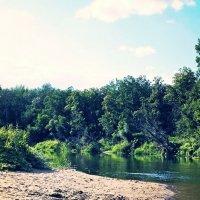 Река Медведица. :: Ксения Мустафина