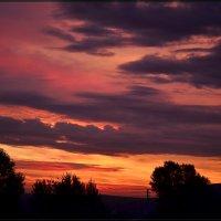 Рассвет августа :: galina tihonova