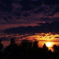 закат из моего окна) :: Екатерина Чунту