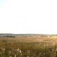 панорама озера Большие Парфенки :: petrovpetrg