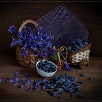 Ранняя ягода жимолость :: Дарья Серебрякова
