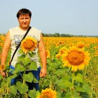 Солнечное настроение. :: Дмитрий Скубаков