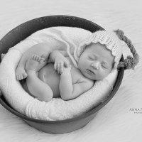 Newborn baby :: Анна Альтман