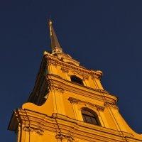 Петропавловка :: Юрий Погодин