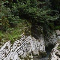 Каньоны реки Псахо :: Светлана Винокурова
