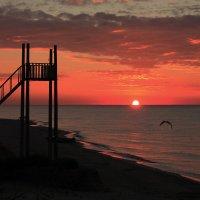 Рассвет на Чёрном море :: Евгения Аксёнова