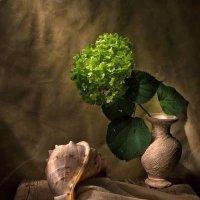Камешки на счастье.... :: Svetlana Sneg