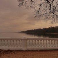 Вид с набережной дворца Монплезир. :: Anton Lavrentiev