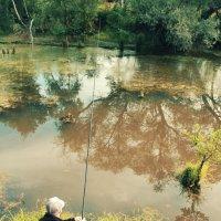 Рыбалка :: Алексей