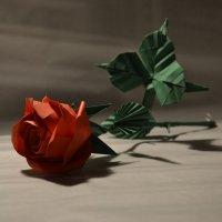 Оригами роза :: Богдан Петренко