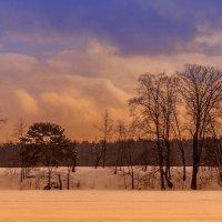 Радость зимнего солнца :: Алексей Соминский