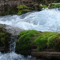 Вода :: Виктор Осипчук