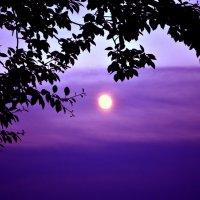 Луна на закате :: ASeOs™ Anna Osipova