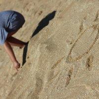 песочное солнце :: Анна Евтухова