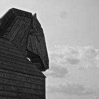 Троянский конь :: Александр Рябинкин