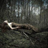 http://ingaprushakevich.blogspot.ru/2013/05/fairy-forest.html :: Inga Prushakevich