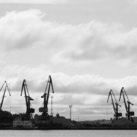 Порт :: Сергей Францев