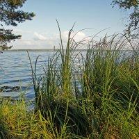 Берег озера 2 вариант :: Юрий Шувалов