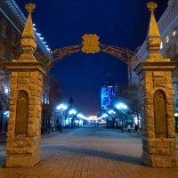 Городские ворота :: Татьяна Котельникова