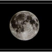 Луна :: Римма Закирова