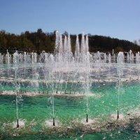 Воды и музыки сплетенье :: Natali Positive