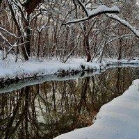 московский февральский пейзаж :: megaden774