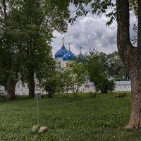 Свято-Юрьев мужской монастырь :: alteragen Абанин Г.