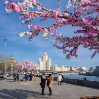 Весна :: Андрей Шаронов