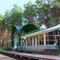 Станция Зоопарк :: Марина Таврова