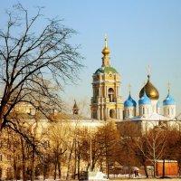 Новоспасский монастырь  г. Москва :: Валентина Пирогова