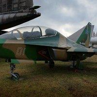 Як-130 Учебно боевой самолёт :: san05 -  Александр Савицкий