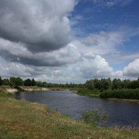 Река Ипуть :: Галина Козлова