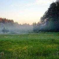 Утро на реке Пырошня :: Леонид Иванчук