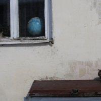 Посидим, поглядим :: Екатерина Богомолова