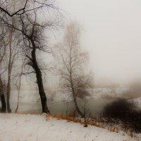 Зимний туман похож на обман... :: Вячеслав Маслов