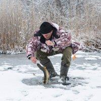 Последний лед... :: Аркадий Шведов