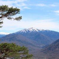 Вид с горы Монашка :: Светлана Попова