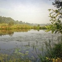 На Кобылином озере :: Галина Каюмова