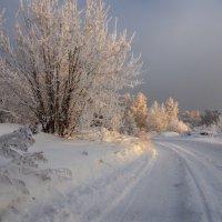И снова зимняя дорога... :: Александр Попов